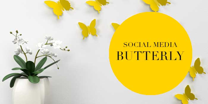 Liz Hall Design - social media butterfly
